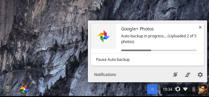 chrome photo backup
