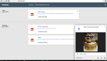 chrome os download notificaitions